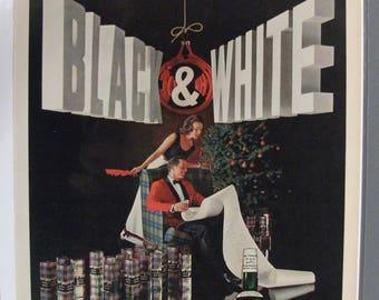104 Black & White Scotch Whisky 1962