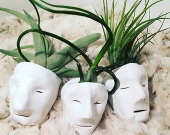 Mini Pot Heads w/ airplant