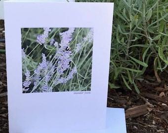 Lavender Field Blank Greeting Card, lavender watercolor image, lavender card, watercolor lavender greeting card