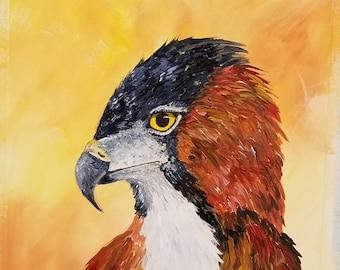 Falcon, bird of prey, nature art, bird falcon print, falconry, bird art, print from original, animal art, animal print