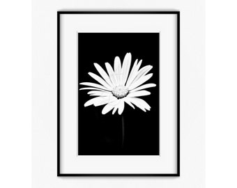 Flower Photography , Flower , Nature , Wall Art , Home Decor , Floral Wall Art , Fine Art Photography , Black , Flower Print