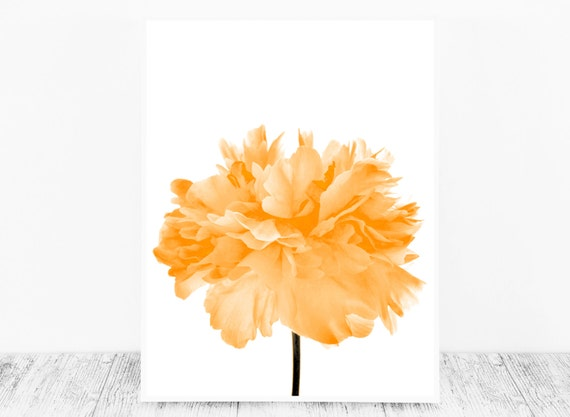 Orange Wall Decor to Brighten your Office or Living Room