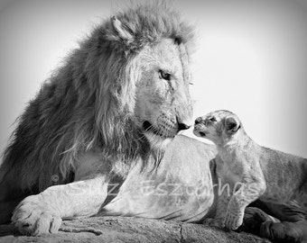 SAFARI BABY ANIMAL Nursery Prints, Set of 4, Black and White Baby Animal Photos, Elephant, Lion, Cheetah, Giraffe, Baby Animal Nursery Decor