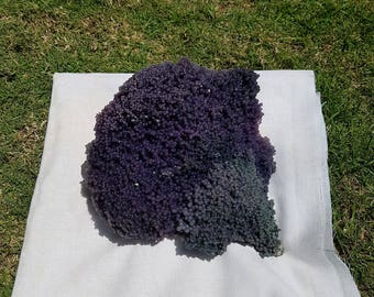 Manakarra Grape Agate Purple Chalcedony Stone''