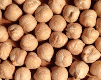 Brown Chickpeas or Garbanzo Beans for Sprouting