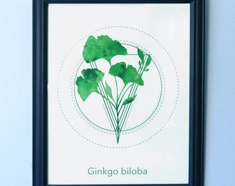 Ginkgo Print