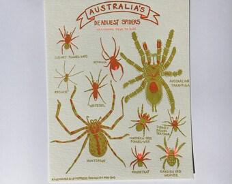 Australia's Deadliest Spiders 8x10 Letterpress Art Print