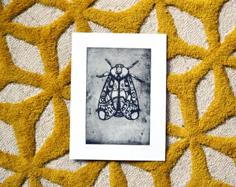 The Moth | Original Etching Drawing | Black Print
