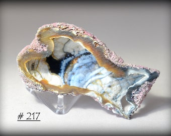 Stunning,  COLORFUL, Fossil Coral with Blue, White, Black, and Amber, Botryoidal Interior, and Pink Exterior - Sawn Open 1/2 Piece
