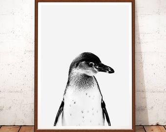 Penguin print Etsy