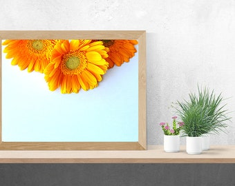 Printable Wall Art, Styled Stock, Stock Photo, Flower Stock Photo, Floral Wall Art, Flower Styled Stock, Printable Flower Wall Art