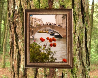 Venice In Bloom Photograph
