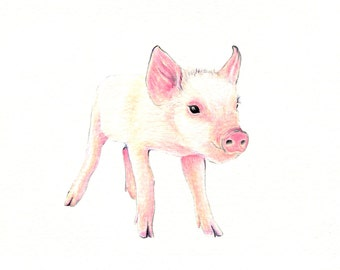 "Piglet art print of an original drawing available 5x7"" or 8x10"""