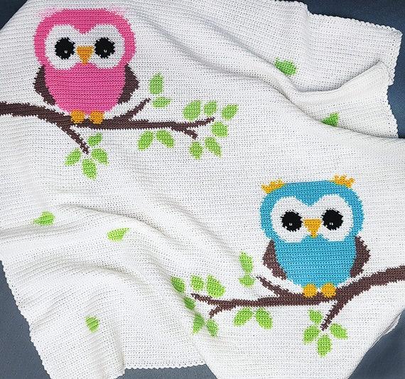 Crochet Pattern Baby Blanket Pattern Two Owls Crochet