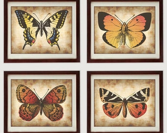 INSTANT DOWNLOAD Parchment Colorful Orange Red Yellow Set of 4 Butterfly Butterflies Printable Print Art Wall Decor Vintage Style Animal
