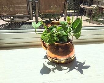 Antique Bronze Teapot Planter