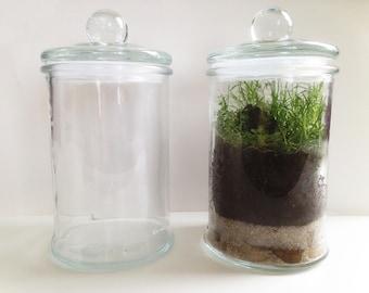 Terrarium, glass jar, candy glass terrarium kit, glass terrarium closed terrarium vase terrarium, glass terrarium diy