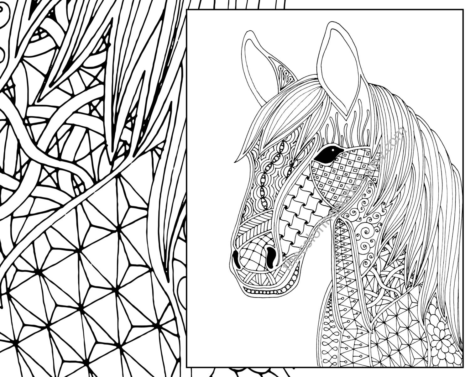 Comfortable Horse Coloring Pages For Adults Contemporary - Example ...