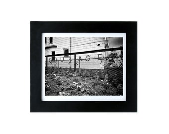 Courage - 8x10 Framed Photography Print