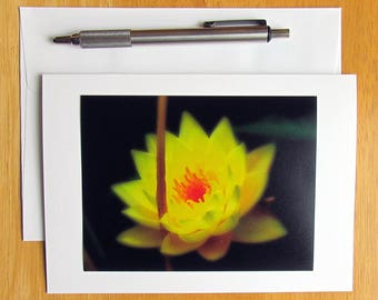 Flower Cards, Water Lily, Blank Cards, Photo Note Cards, Handmade Cards, Pen Pal Cards, Stationery, Nature Cards, Yellow Flowers, Note Cards