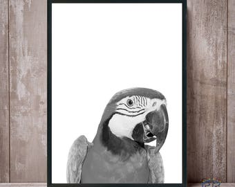 Parrot Print, Black and White Parrot, Macaw Print, Parrot Wall Art, Parrot Photo, Parrot Poster, Bird Print, Tropical Decor, Tropical Print