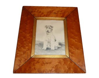 1910's Pencil Drawing Of A Welsh Terrier- Framed And Glazed