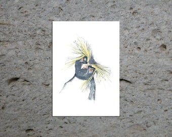 Rockhopper Penguin Original Watercolour Animal Painting, Bird Art, Children's Art, Wall Art, Wildlife Art