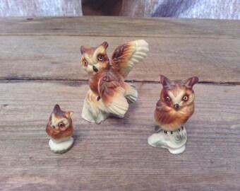 vintage miniature owl set