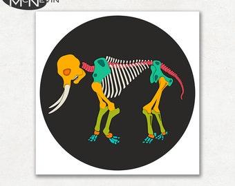 ELEPHANT SKELETON, Modern Pop Art, Photographic Animal Print