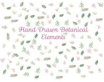 Watercolor Botanicals