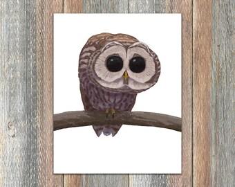 Barred Owl Bird Print