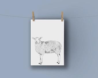 Sheep A3 Nursery Print