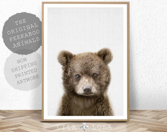 Baby Bear, Printed Poster, Woodland Nursery Decor, Wall Art Print, Kids Room Large Poster, Bear Cub Nursery Animal, Colour Photo