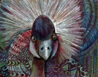 original art  aceo drawing crowned crane African bird zentangle design