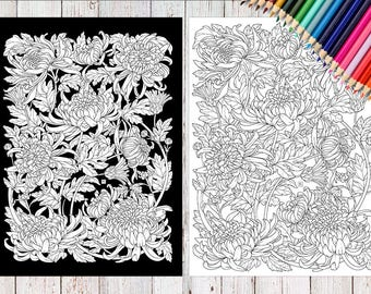 Botanical coloring pages. 2 JPEG in A4 format. Chrysanthemum. Coloring pages for adults.Instant Download Printable.