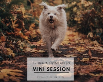 Mini Photo Session
