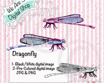 We Are 3 Digital Shop, Dragonfly - Pink, Blue and Black and White