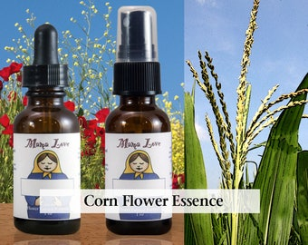 Corn Flower Essence, 1 oz Dropper or Spray for Grounding, Groundedness