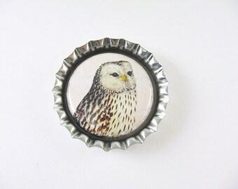 Owl Bottlecap Fridge Magnet Home & Living, Kitchen, Storage Brown