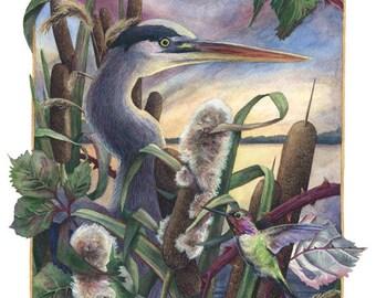 Fine Art Print of Original Watercolor Painting - The Heron & The Hummingbird