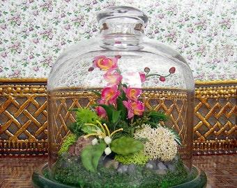 "Miniature Cloche. Miniature composition ""Forest orchid"". Glass Cloche . Handcrafted miniature"