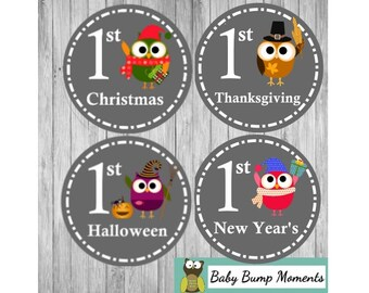 Gifts for New Moms, First Holiday Stickers, First Easter, Baby's First Holidays, Holiday Baby Sticker, Baby Shower Gift, Owls