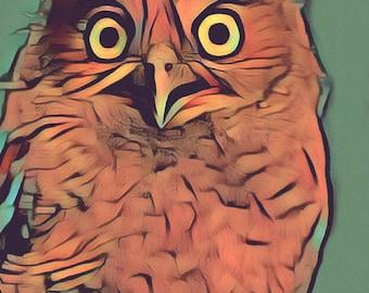 Owl - Digital Print, animal art, wall decor