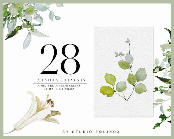 Watercolor Greenery Elements Clipart