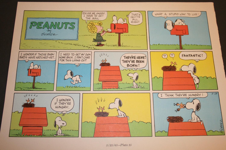 Snoopy and Woodstock Comic Strip Peanuts Retro Nostalgic