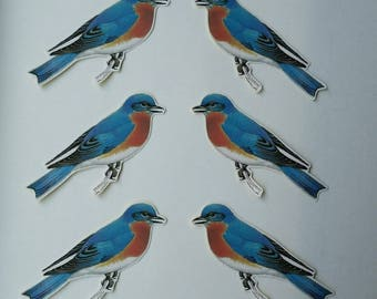 6 x Bluebird stickers. Snail mail hobonichi midori planner journal decorations. Ephemera.