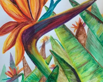 "Watercolor flowers bird of paradise art 9""x12"" multi color red blue green orange hawaii"