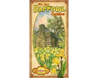 Mrs. Lee's Daffodil Garden
