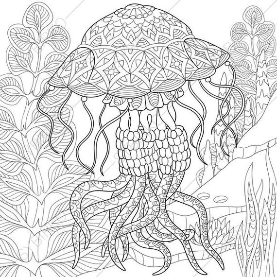 Ocean World Jellyfish Jelly fish