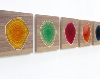 Cinq sculptures murales en bois sculpté et résine colorée